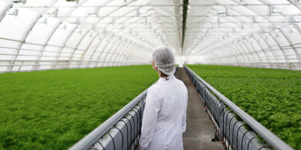 Introducing AgResearch: Our Food Our Future