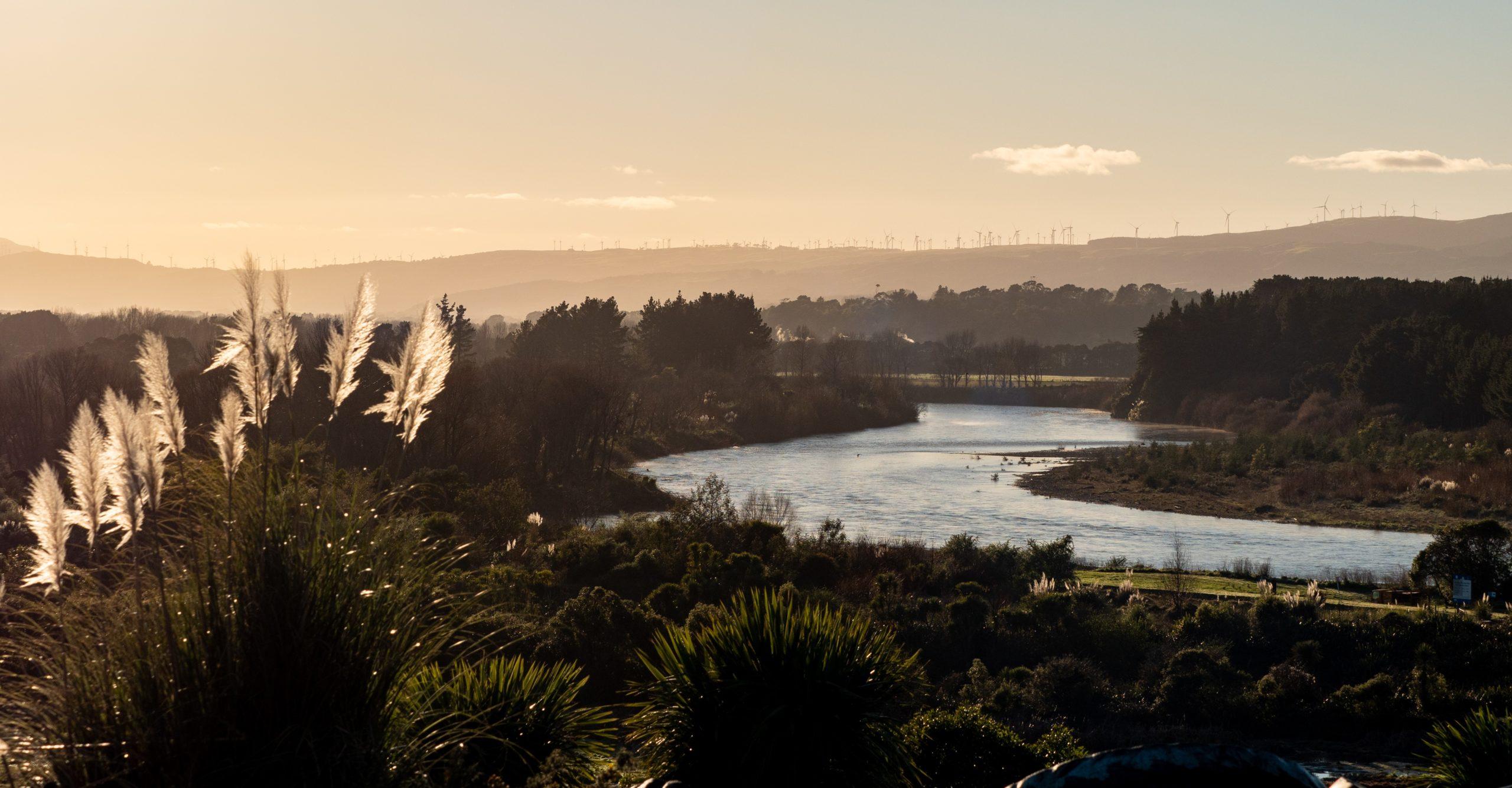 Report on Māori business in Manawatū Whanganui