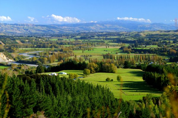 Lower Pohangina Valley