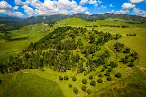 Rural Manawatu